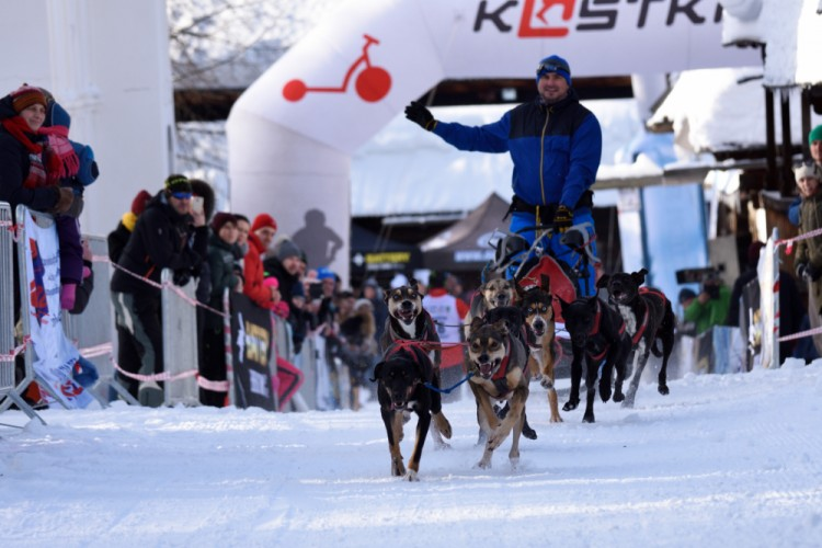 mushing, Zuberec 2019