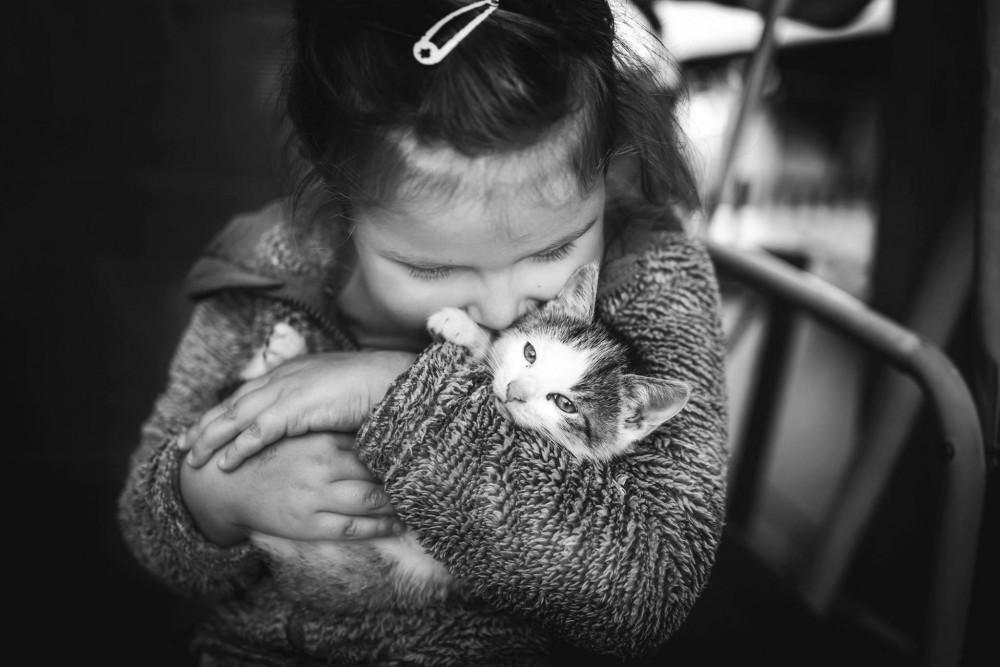 Fotky z bielej mačička